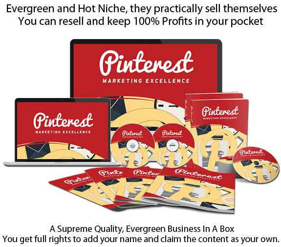 Pinterest Marketing Excellence PLR INSTANT Download