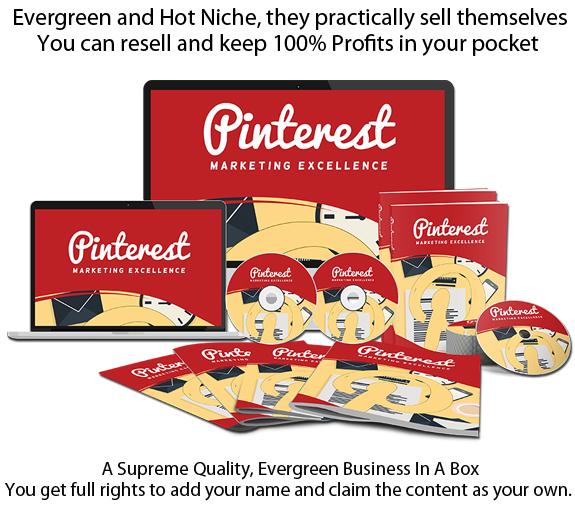 Pinterest Marketing Excellence PLR INSTANT Download