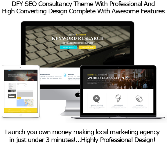 SEOAgency WP Theme FULL License Instant Download By Robert Phillips