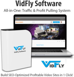 VidFly Software Pro Plan License Lifetime Access
